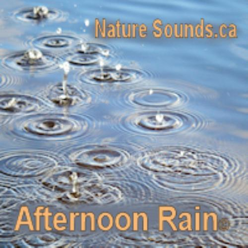 First Additional product image for - Afternoon Rain 2Hr