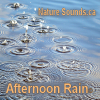 Afternoon Rain 2Hr | Music | New Age