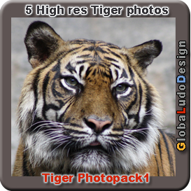 tiger photopack1