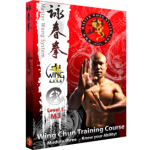 sil lim tao module 3 - know your ability!
