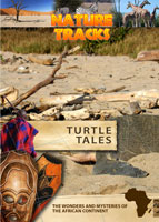 Nature Tracks - Turtle Tracks | Movies and Videos | Documentary