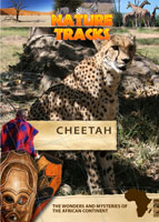 Nature Tracks - Cheetah | Movies and Videos | Documentary