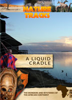Nature Tracks - A Liquid Cradle | Movies and Videos | Documentary