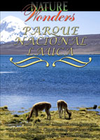 Nature Wonders Lauca National Park Chile | Movies and Videos | Documentary