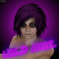 Wild Hair | Software | Design