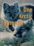 One Arctic Summer | Movies and Videos | Documentary