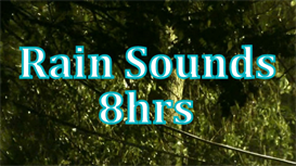 8hrs of Rain Sounds | Music | Miscellaneous