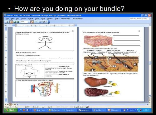 Fourth Additional product image for - Human Body Systems and Health Topics Unit