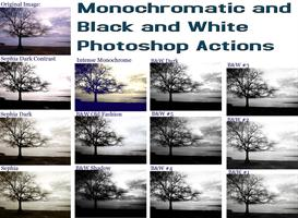 12 black & white, and monochromatic photoshop actions