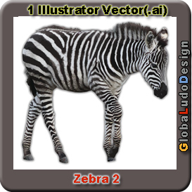 Zebra Vector2 | Other Files | Clip Art