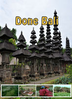 Done Bali | Movies and Videos | Documentary