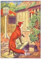 Fox Print from 1906 Child's Animal Book | Photos and Images | Animals