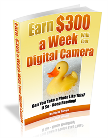 How To Make $300 a Week With Your Camera