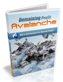 Domaining Profits Avalanche