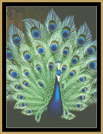 Peacock Portrait I - Cross Stitch Pattern | Crafting | Cross-Stitch | Other