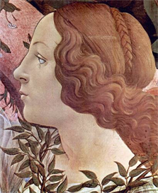 Image Photo Birth of Venus Detail 2 Botticelli | Photos and Images | Vintage