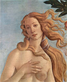 Image Photo Birth of Venus Detail 3 Botticelli | Photos and Images | Vintage