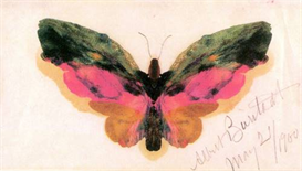Image Photo Butterfly Bierstadt | Photos and Images | Vintage
