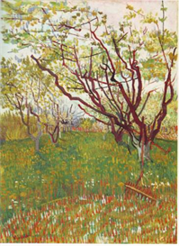 Image Photo Cherry Tree  Van Gogh | Photos and Images | Vintage