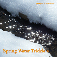 Spring Water Trickle 1 Hour | Music | Ambient