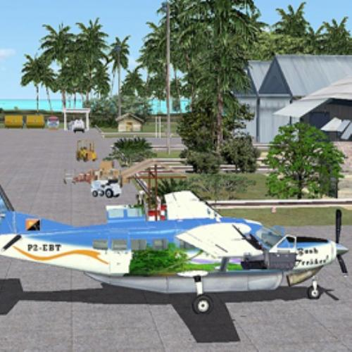 First Additional product image for - PNG Bush Flying