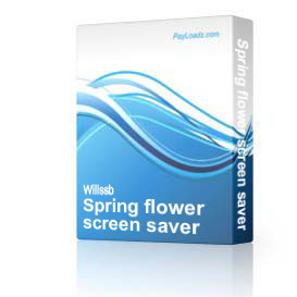 Spring flower screen saver
