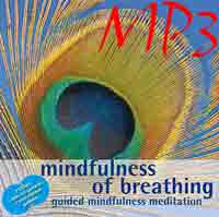 Shorter Guided Mindfulness of Breathing | Other Files | Everything Else