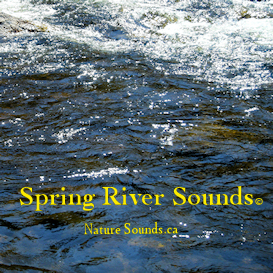 Spring River Sounds | Music | New Age