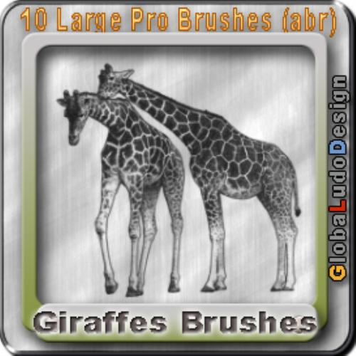 First Additional product image for - 10 Giraffes Pro Brushes
