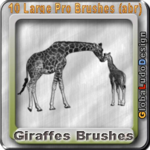 Second Additional product image for - 10 Giraffes Pro Brushes
