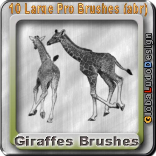 Third Additional product image for - 10 Giraffes Pro Brushes