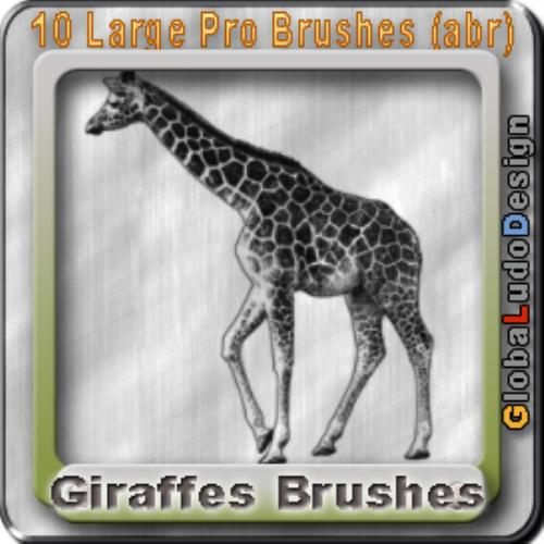 Fourth Additional product image for - 10 Giraffes Pro Brushes