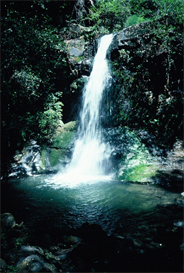 Wild Rogue Waterfall Hi-Res Image | Photos and Images | Nature