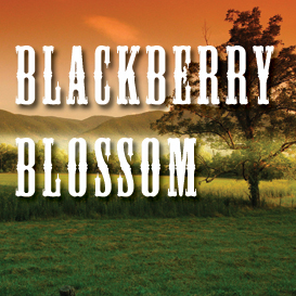 blackberry blossom full tempo backing track