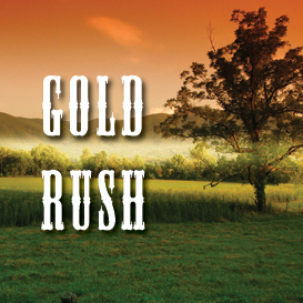 Gold Rush Full Tempo Backing Track | Music | Acoustic