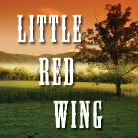 Little Red Wing Full Tempo Backing Track | Music | Acoustic