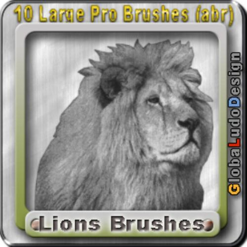 First Additional product image for - 10 Lions Pro Brushes