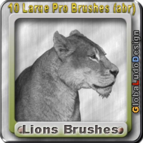 Second Additional product image for - 10 Lions Pro Brushes