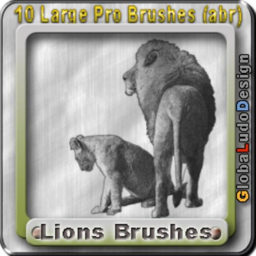 Third Additional product image for - 10 Lions Pro Brushes
