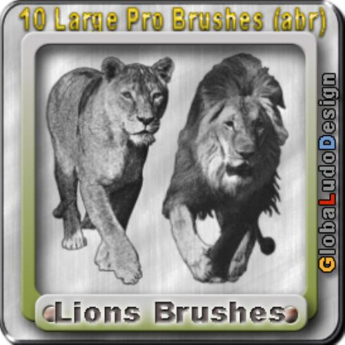 Fourth Additional product image for - 10 Lions Pro Brushes