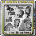 10 Lions Pro Brushes | Other Files | Graphics