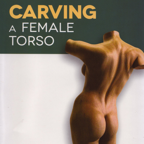 First Additional product image for - Female Torso Video