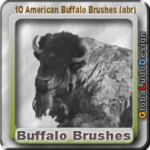 First Additional product image for - 10 American Buffalos Pro Brushes
