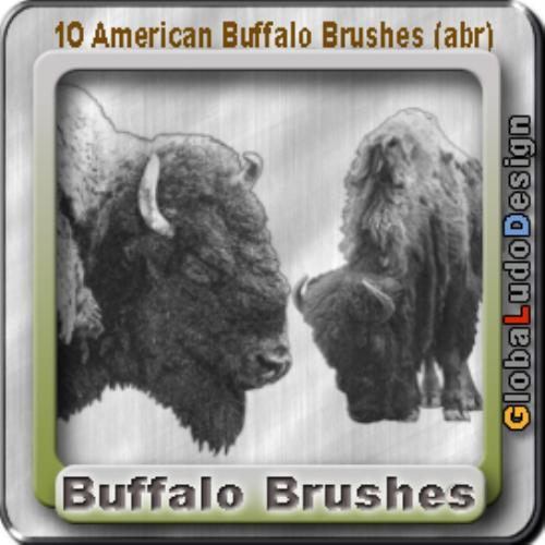 Second Additional product image for - 10 American Buffalos Pro Brushes