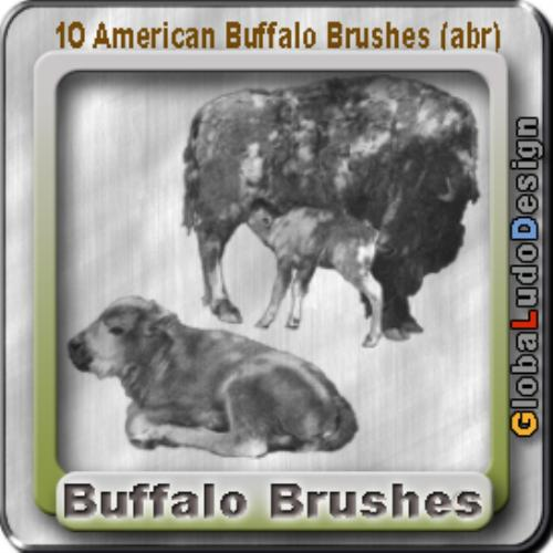 Third Additional product image for - 10 American Buffalos Pro Brushes