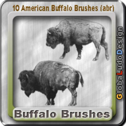Fourth Additional product image for - 10 American Buffalos Pro Brushes