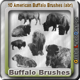 10 American Buffalos Pro Brushes | Other Files | Graphics