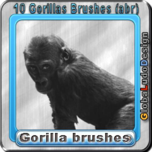 First Additional product image for - 10 Gorillas Brushes