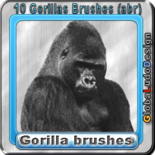 Second Additional product image for - 10 Gorillas Brushes