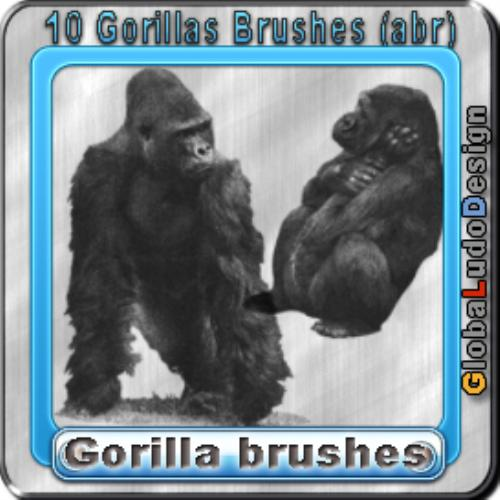 Fourth Additional product image for - 10 Gorillas Brushes